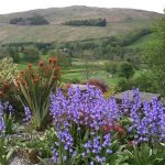 Troutbeck Garden Trail 2015 in pictures