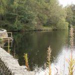 A hidden gem: High Dam above Finsthwaite