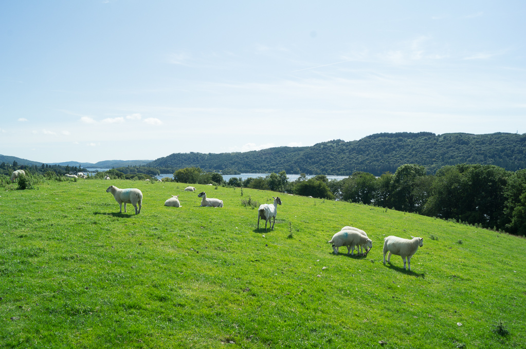 View to the south end of Windermere