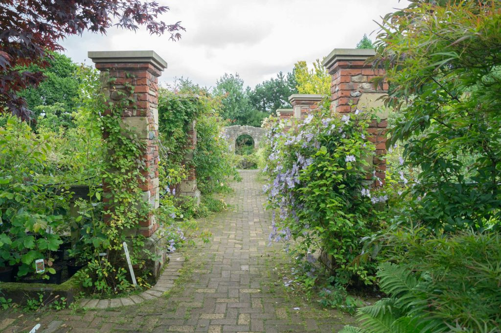 One of the many 'corridors' running through the nursery