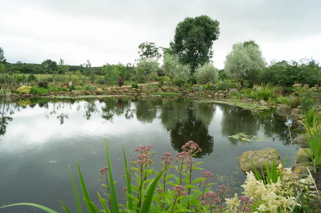 The lake at Larch Cottage Nurseries, Penrith, Cumbria