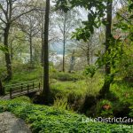 A secret haven near Ambleside: Stagshaw Gardens and Skelghyll Wood
