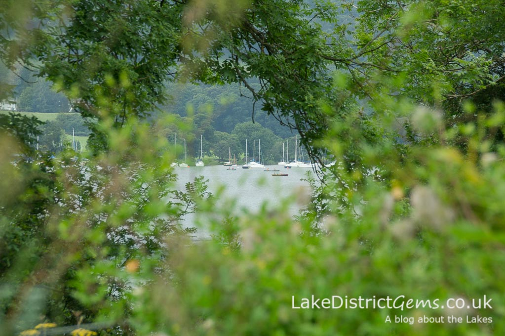 A glimpse of Coniston Water through the trees from the Lower Garden at Brantwood, Coniston