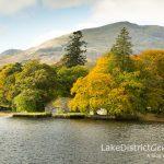 In search of autumn colour in Coniston