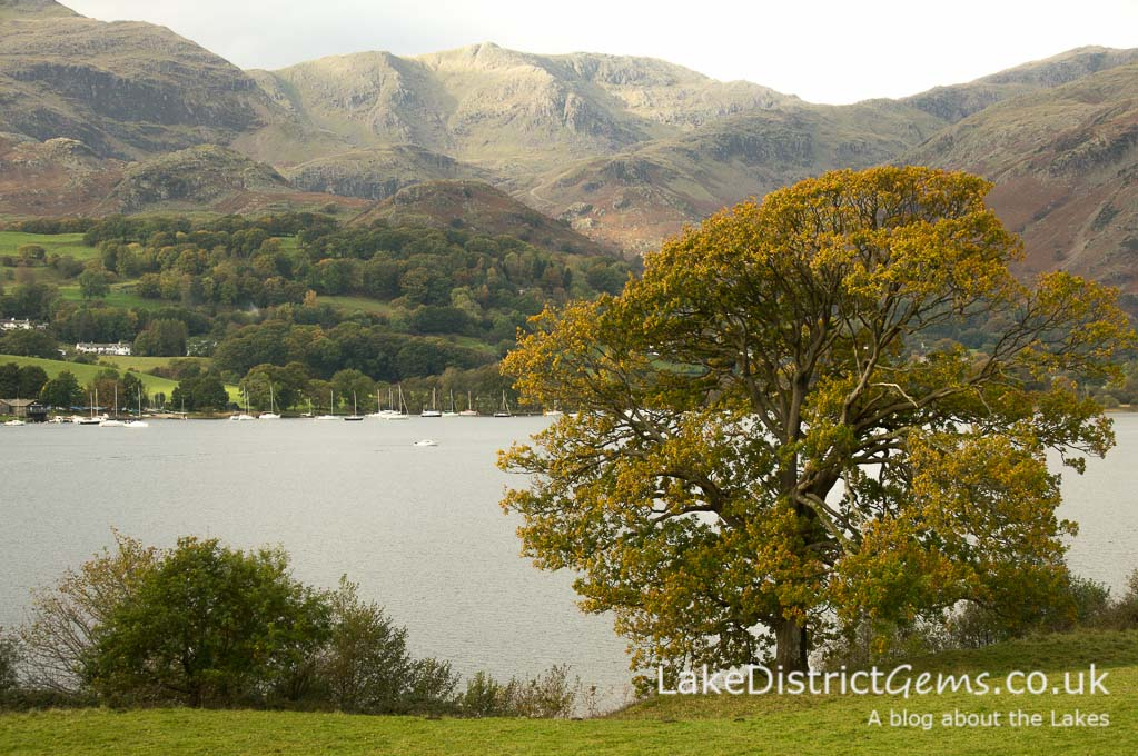 Coniston Water from the road outside Brantwood