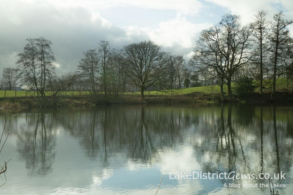 The tarn at Holehird Gardens