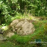 A sleeping beauty in a garden, but where? Part of my November Lake District quiz