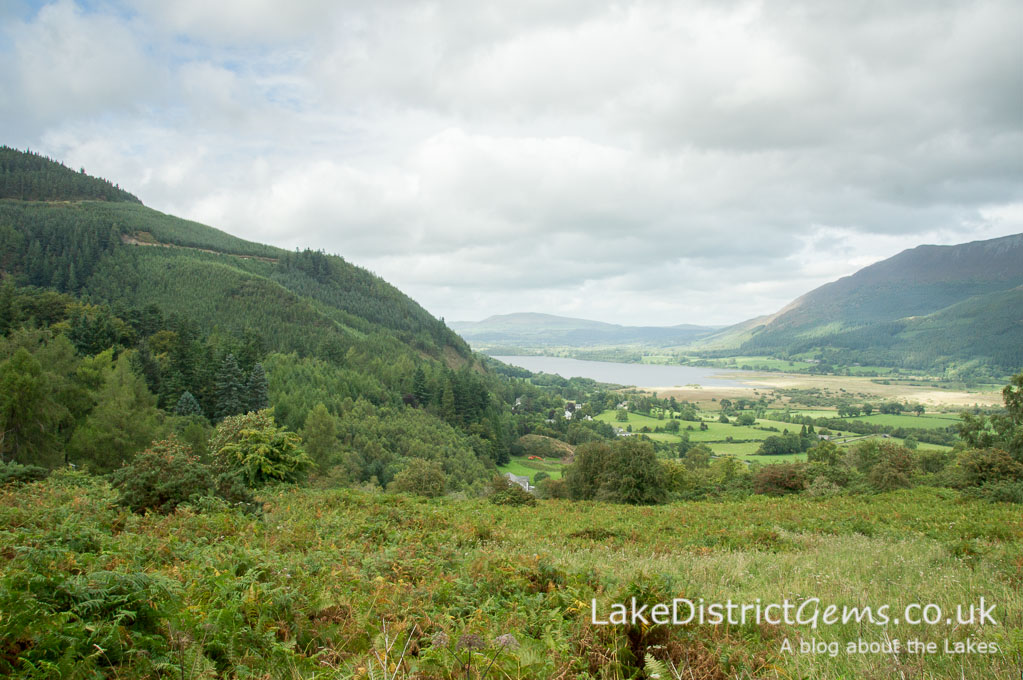 Whinlatter Forest and Bassenthwaite