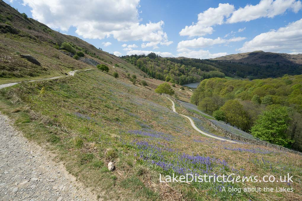 The footpaths at Loughrigg Terrace
