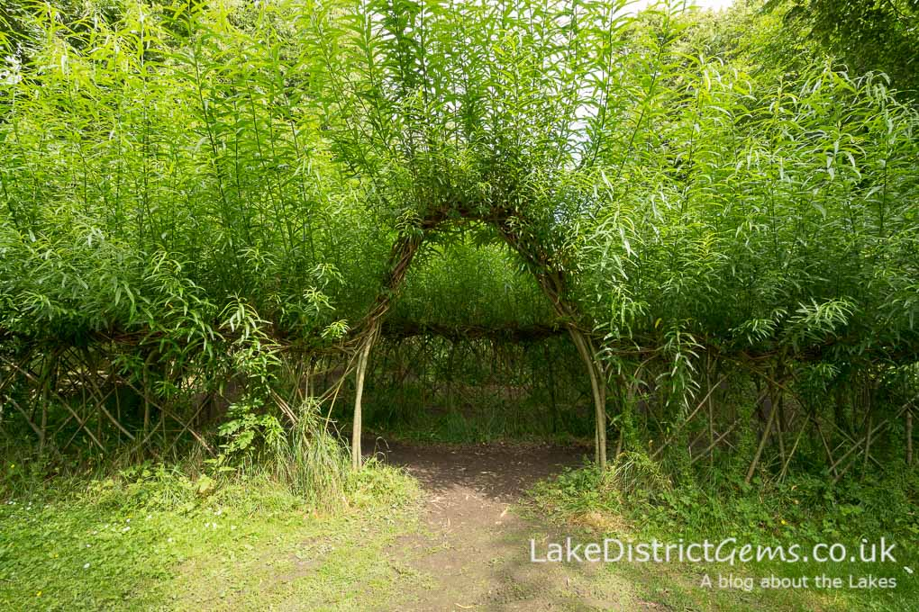 The entrance to the willow maze at Levens Hall