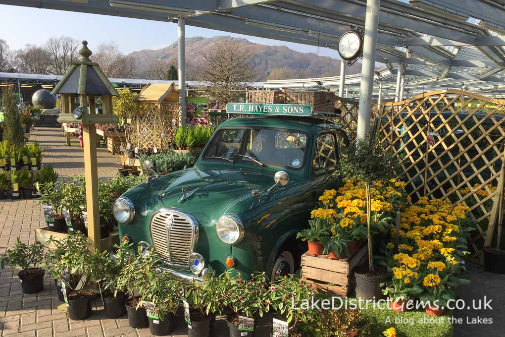 An undercover display at Hayes Garden World in Ambleside