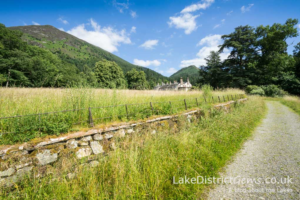 The meadow at Mirehouse, Bassenthwaite