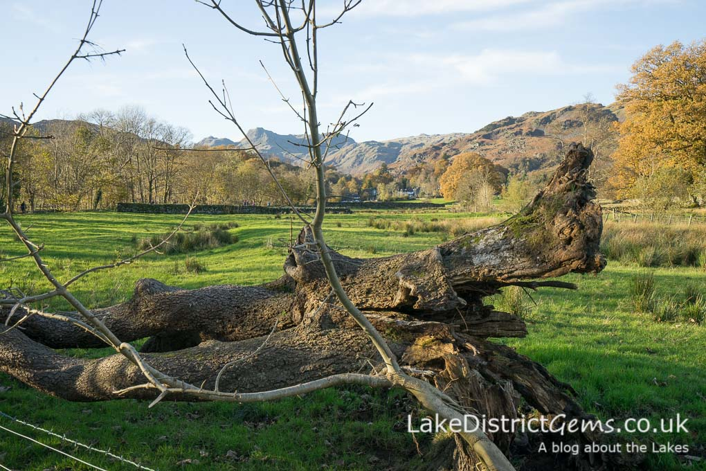 Looking back towards the village of Elterwater