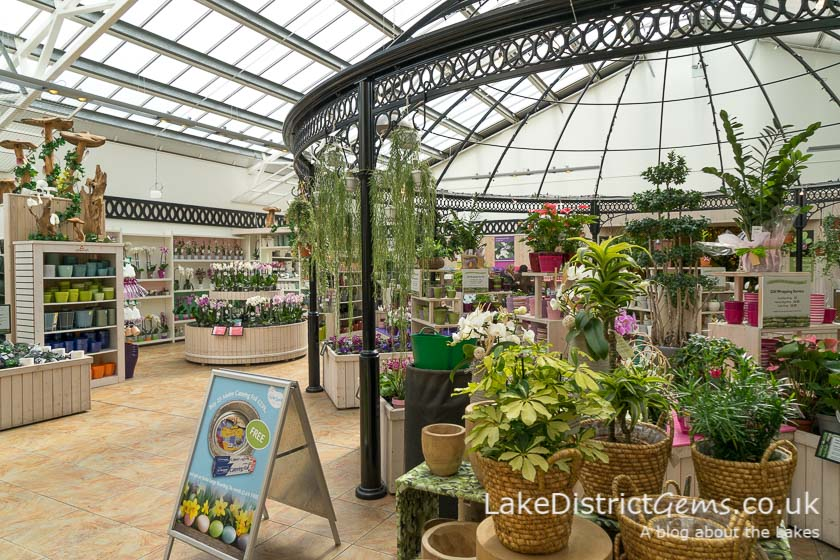 The indoor plant section at Barton Grange
