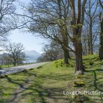 25 photographs to tempt you to the Lake District this spring