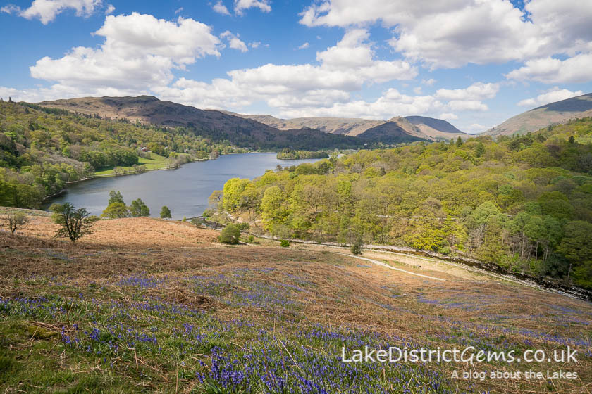 From Loughrigg Terrace during the bluebell season
