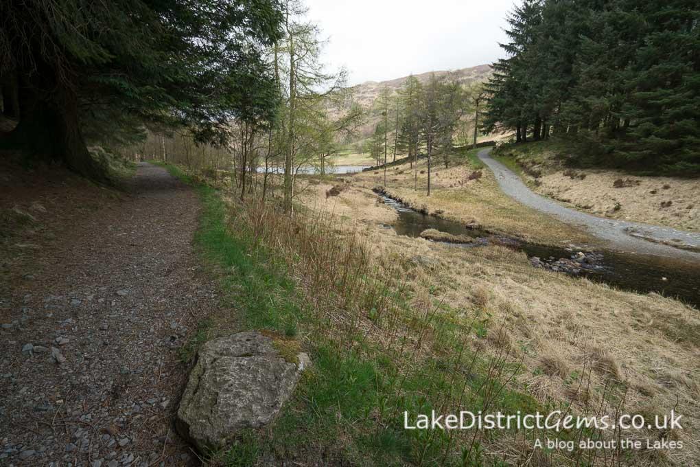 Heading behind the tarn - Blea Tarn