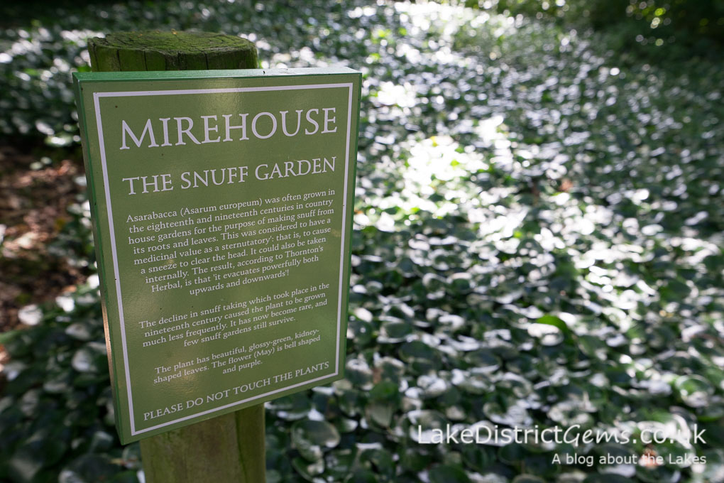 The Snuff Garden at Mirehouse